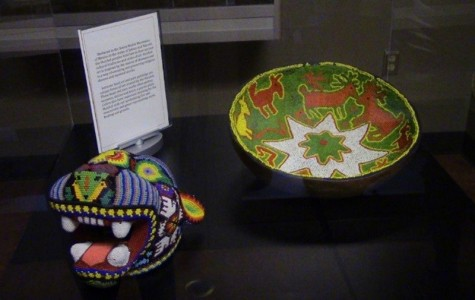 Anthropology museum offers rich history to students